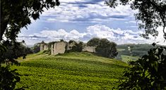 If you're looking to visit real France, authentic, unspoiled and utterly gorgeous, then Gascony is where you should head for the tour of a lifetime.