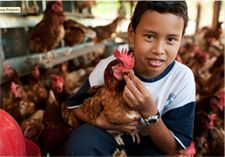 Samaritan's Purse does so much, including helping families earn a living by starting up family farms and barns!