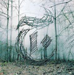 Être créatif avec la nature ! © Nicole Yeoman #Typo