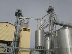 Transportoarele cu lant si racleti pentru cereale, care mai sunt denumite si redlere sunt echipamente special construite pentru a transporta cerealele catre diferitele utilaje ale bazei de cereale in conformitate cu fluxul tehnologic dorit, astfel incat sa nu produca deteriorarea bobului transportat. Transportoarele speciale cu lant si racleti se pot utiliza cu succes la incarcarea sau