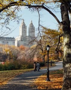 Central park vibes by Pavel Bendov @imxplorer   New York City Feelings   Bloglovin'