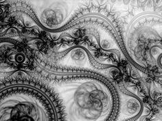 Fractal. This is beautiful, love the black and white