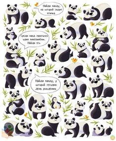 """Children book """"Search and find. Animals""""Published by Clever Media Group, 2016 Illustrations, Book Illustration, Panda Gifts, Panda Party, Search And Find, Preschool Learning Activities, Computer Animation, Cute Panda, Early Learning"""