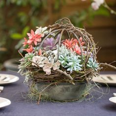 Sphere Easter Basket.  We created a garden-inspired Easter centerpiece by pairing a small Hanging Sphere Basket with dried grapevine. Perched atop a Linen Wrapped Dish filled with potting soil, this basket blooms with a colorful mix of live succulents, ceramic eggs, and paper Easter grass.   www.terrain.com