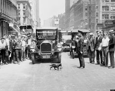 A police officer stops traffic so that a mother cat can cross an NYC street with her kitten, ca. 1925