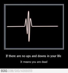 If there are no ups and downs in your life,  it means that you are dead.