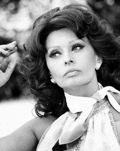 Dedicated to the Italian actress, style icon, bombshell and living legend SOPHIA LOREN! Hollywood Stars, Classic Hollywood, Old Hollywood, Maria Callas, Tilda Swinton, Elizabeth Taylor, Brigitte Bardot, Adele, Ute Lemper