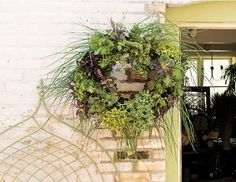 why not hang right on your kitchen door...Herbal wreath...