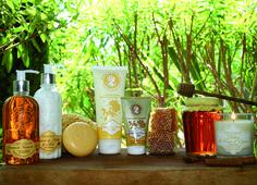 Provence, Bottle, Home Decor, Decoration Home, Room Decor, Flask, Provence France, Interior Decorating
