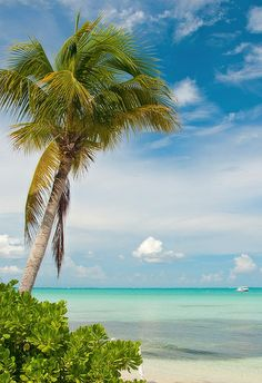 Rum Point, Grand Cayman - by candisfl, via Flickr