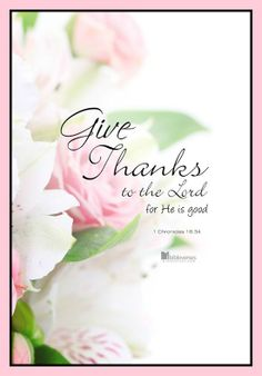 www.facebook.com/pinkpearlsofgrace