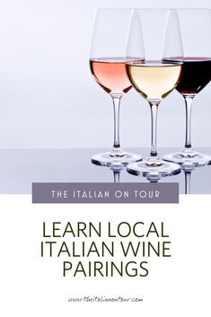 In Italy taking a wine tour is about more than just tasting the wine. It is your first introduction to La Dolce Vita, Italy's people and food culture Italy Travel Tips, Travel Destinations, Travel Europe, Italy Tours, Travel Advice, Travel Guide, Italian Wine, Group Travel, Culture Travel