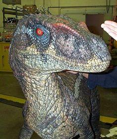 Jurassic Park Raptor, Jurassic Park Trilogy, Jurassic Movies, Jurassic World Dinosaurs, Jurassic Park World, Dinosaur Coloring Sheets, Dinosaur Wallpaper, Jurassic World Fallen Kingdom, Falling Kingdoms