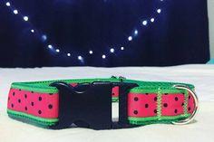 Wild Watermelon Dog Collar by mileyandmoscow on Etsy