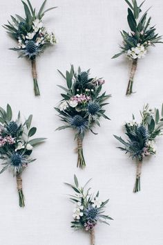 buttonholes groom and groomsmen shade of dusty blue wedding Blue Boutonniere, Wedding Boutonniere, Corsage Wedding, Boutonnieres, Wedding Bouquets, Wedding Flowers, Buttonholes Wedding Diy, Groomsmen Buttonholes, Buttonhole Flowers