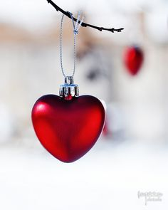 Christmas, red and white Little Christmas, Christmas Time, Christmas Bulbs, Merry Christmas, White Christmas, I Love Heart, My Heart, Valentine Day Love, All You Need Is Love