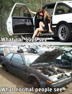 What Car Guys See