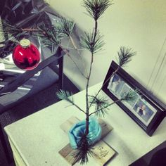 Always nice to see a Charlie Brown tree. Photo by bcstserv