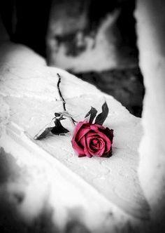 2月14日、st Valentine day 、、、はみんな知ってるよねw。その日が殉教者 バレンティンが、国王に(ローマの若者達を密かに結婚させた罪)罪を咎められて、処刑された日だってことも.......知らなかったんで、Wikiりましたw  Happy Valentine!!!   posting @ Bangkok pm4:15