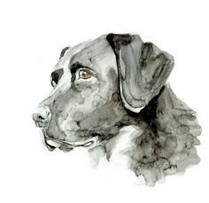 13x19 Custom Pets Portrait original watercolor painting customized commision dog cat animal pet lover large illustration drawing