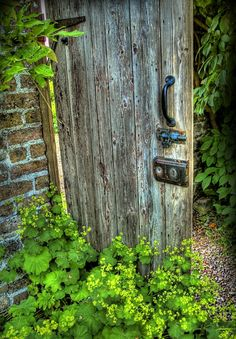 Painting Secret Garden Door | GardenDoorWP
