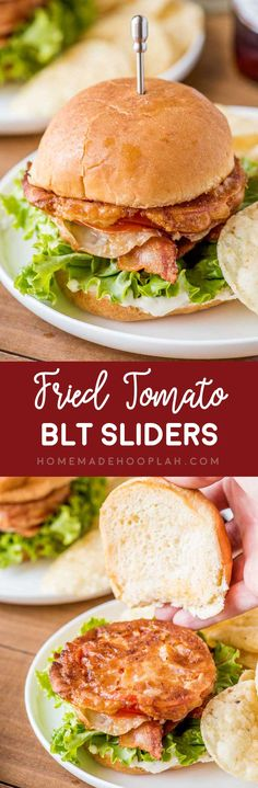 Fried Tomato BLT Sliders! Whether you love fried green tomatoes or just need to use up the red tomatoes from your garden, these BLT sliders are a zesty crowd-pleasing dinner! | HomemadeHooplah.com