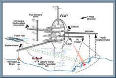 FLIP Ship - Google 搜尋