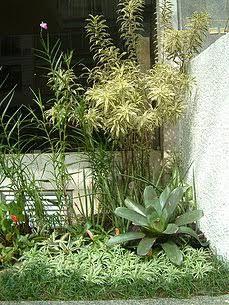 Resultado de imagem para paisagismo em condominios residenciais
