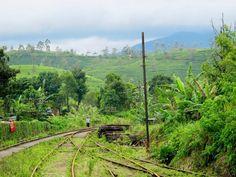 Itinéraire pour 1 semaine au Sri Lanka / 1 week in Sri Lanka itinerary