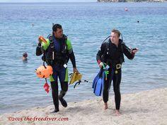 The-Freediver - Google+