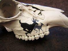 Custom Artwork, Handpainted Murals, Pet Portraits, Portraits and Calligraphy. Deer Skull Decor, Painted Animal Skulls, Cow Skull Art, Bear Skull, Carved Skulls, Skull Crafts, Antler Crafts, Antler Art, Taxidermy Decor