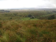 Looking towards Crockern Tor, Dartmoor