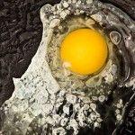egg, urban grocer, modernist cuisine cookbook