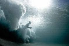 underwater photography | underwater photography by mark tipple
