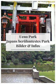 Der Ueno Park ist eine riesige Parkanlage mitten in Tokyo, Japan. Er beherbergt einen Zoo und viele Museen, unter anderem das Nationmuseum von Tokyo. Ein perfektes Ausflugsziel für die gesamte Familie, auch während der Kirschblütenzeit.