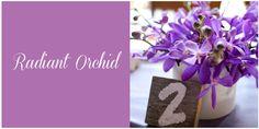 Radiant orchid, ideal para bodas en primavera o verano. #colorestema #radiantorchid #wedding