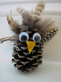 Caity made this owl for a project she had at school. I think it turned out great. It was made from a pine cone, feathers (you can get at...