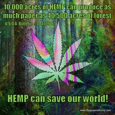 Hemp will save the world