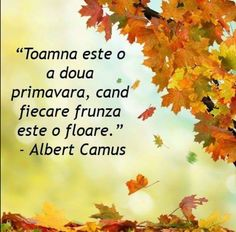 Albert Camus, Popular Girl, Fashion Games, Online Games, Verses, Qoutes, Messages, Autumn, Thoughts
