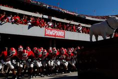 Sanford Stadium, Georgia. The Bulldogs team prepare to enter