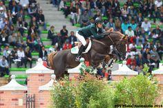 "jumper-bitch: ""ilovelaica: "" My endless list of favourite horses: Quabro de L'Isle. [Ridden by Pedro Veniss.] "" this horse is beyond gorgeous """