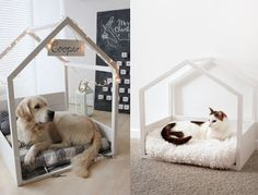 This amazing photo is definitely a very inspirational and superior idea Cute Dog Beds, Diy Dog Bed, Pet Beds, Animal Room, Dog Bedroom, Pet Corner, Pet Hotel, Dog Area, Dog Rooms