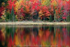 Huron Harmony II - Wetmore Pond (Huron Mountains - Upper Michigan) | by Aaron C. Jors
