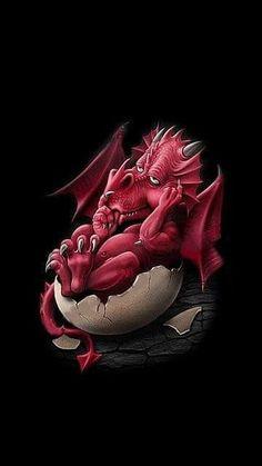 WALLPAPERS - Gothic, skulls, death, fantasy, erotic and animals Dragon Girl, Dragon Egg, Magical Creatures, Fantasy Creatures, Cute Dragon Drawing, Dragon Rouge, Funny Dragon, Dragon's Lair, Fantasy Drawings
