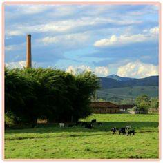 Zona Rural - Fazenda Rennó