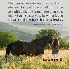 In the words of Pluvinel, master horseman of the 16th century!