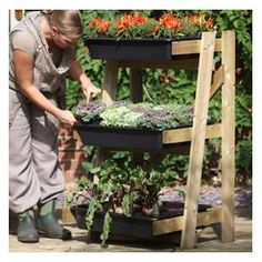 Garden vegetable planters - home design inspiration Vegetable Garden Planters, Wooden Garden Planters, Garden Diy On A Budget, Allotment Gardening, Garden Online, Vertical Planter, Organic Gardening Tips, Autumn Garden, Home Design