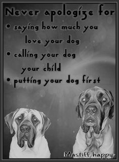 i treat my dogs like my children Big Dogs, I Love Dogs, Puppy Love, Cute Dogs, Dogs And Puppies, Doggies, Dog Quotes Love, Beware Of Dog, English Mastiff