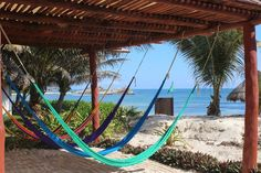 Relax seaside in one of many Hammocks at Maya Tulum Resort   Hold your spot with a $500 deposit at https://www.intentionalbliss.org/mexico