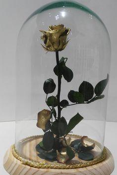 La rosa eterna. Es la rosa del amor, la rosa de la bella y la bestia. Comprala y ten este fantástico detalle en tu rincón más preciado de tu casa http://ciroflor.com/rosaeterna/